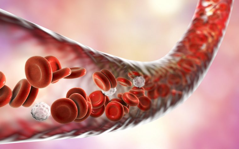 Endothelium Function in AS Improved with Methotrexate Alone or Combined with Anti-TNF Agents, Study Finds